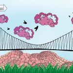 Boğaziçi Köprüsü'ne seyir terası
