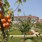 Bağcılar'ın nostalji bahçeleri