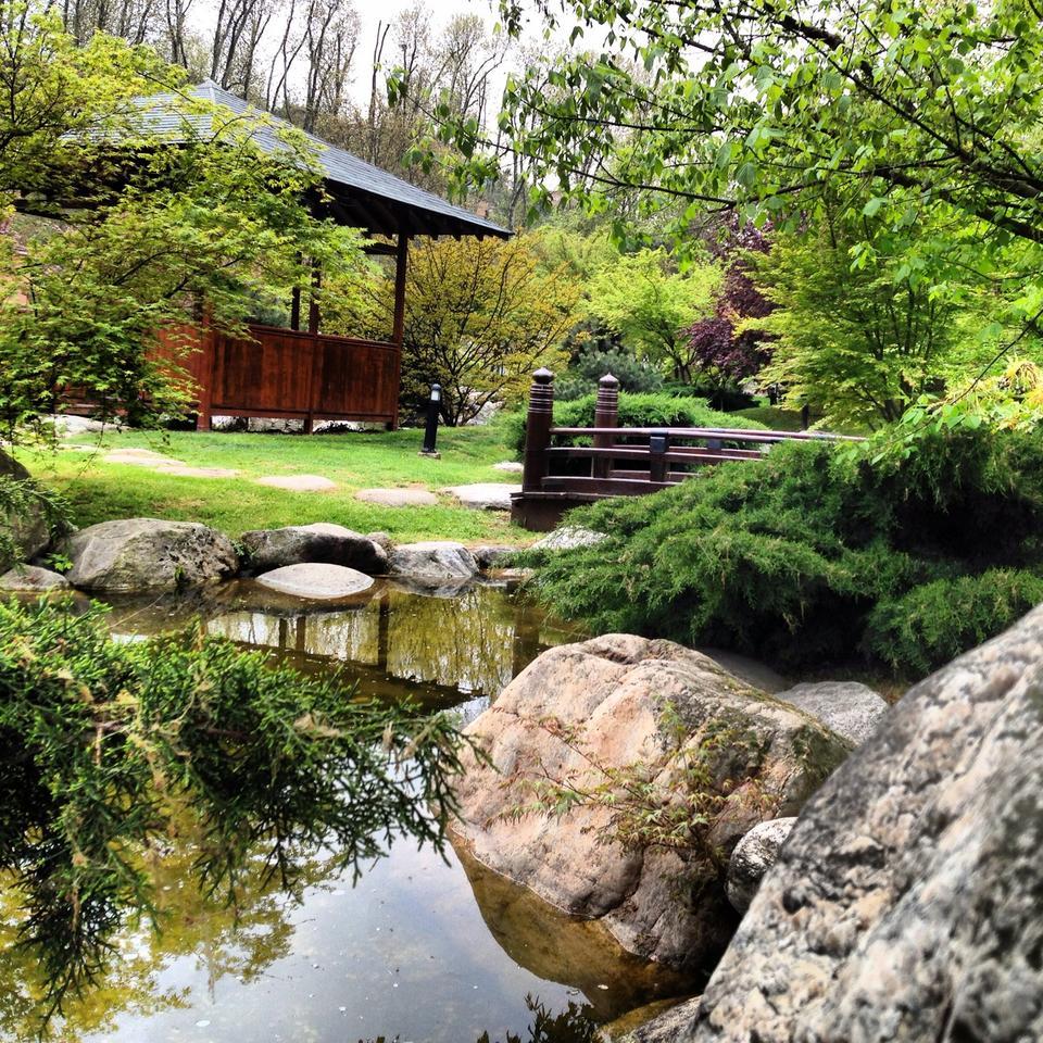 Japon-Bahçesi-Parkı-İstanbul-Sarıyer-Baltalimanı-9